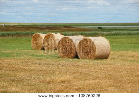 Round Straw Bales In Meadow Landscape Closeup
