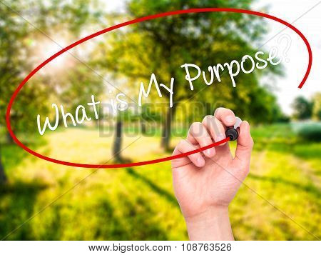 Man Hand writing What is My Purpose? with black marker on visual screen.