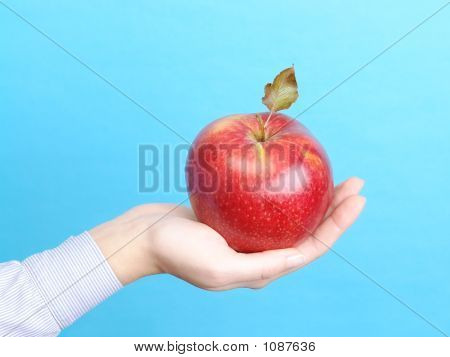 Female Palm With Red Apple