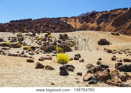 Volcanic bombs on Montana Blanca Teide National Park Tenerife Canary Islands Spain