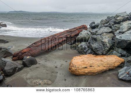 Alki Shoreline - Logs