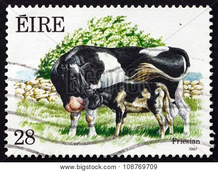 Postage Stamp Ireland 1987 Friesian, A Breed Of Cattle