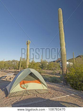 Campsite In A Desert Park