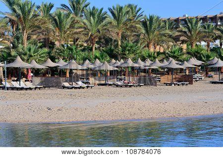 sandy beach in Marsa Alam