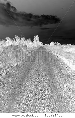 Black And White Countryside Road