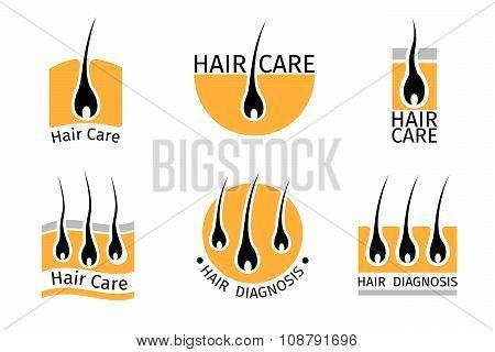 Hair follicle diagnostics logos set