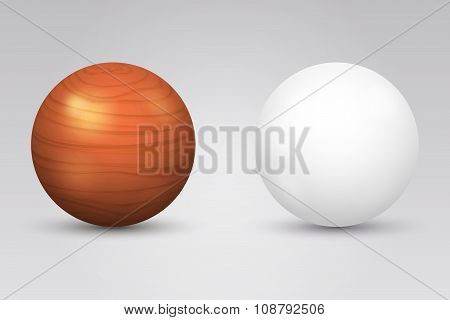 Realistic vector white ball and wooden sphere