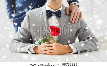 people, celebration, homosexuality, same-sex marriage and love concept - close up of male gay couple with red rose flower putting hand on shoulder over snow effect