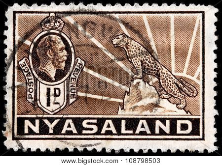 African Leopard Stamp