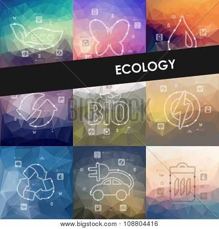 ecology timeline infographics with blurred background