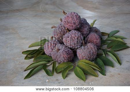 Purple Custard Apple