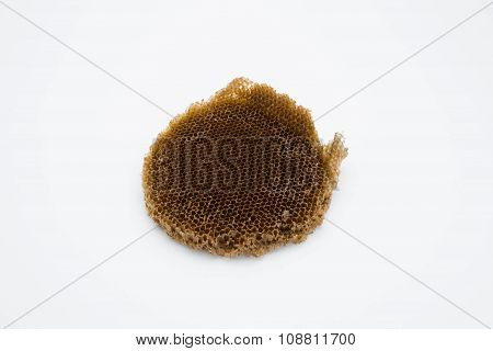 abandon bee hive