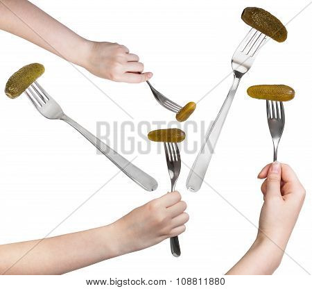 Set Of Dinning Forks With Pickled Cucumber