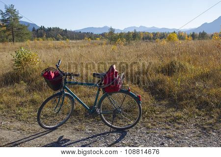 Cycling In The Isar River Floodplain, Autumn Moorland Bavaria