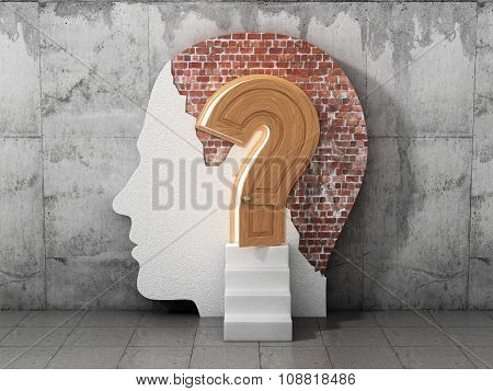 Concept Lot Of Answers To The Question. The Opened Doors In Form Of Question Sign In Human Head. Abs