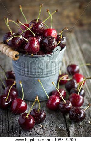 Sweet Cherries In A Little Bucket