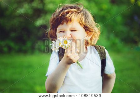 Child With Bouquet Of Daisies In His Hands.