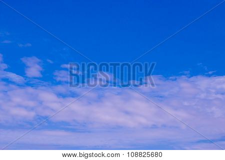 Blue sky for background.