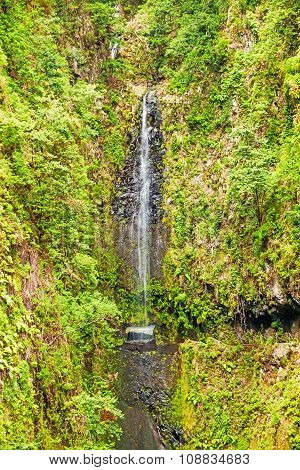 Tropical Waterfall, Madeira
