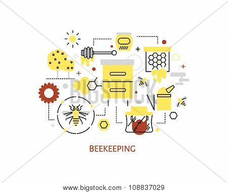 Beekeeping and honey infographics.