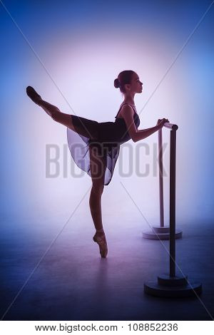 The young ballerina stretching on the bar