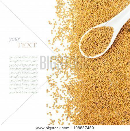 Mustard Seeds Over White