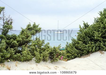 Glimpse Of A Boat Between Green Trees, Blue Sea And Cloudy Sky