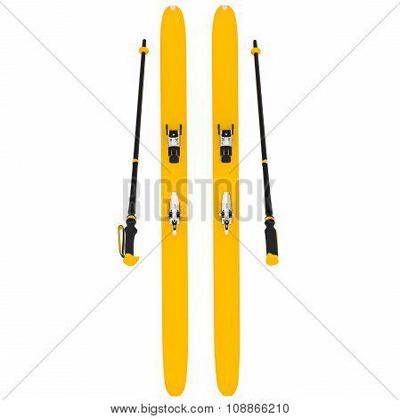 Skiing orange ski poles, top view