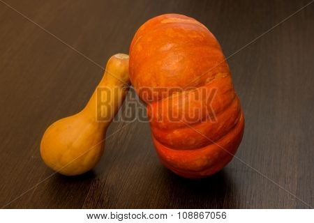 Autumn harvest -  pumpkins and squash. Pumpkin and zucchini varieties.