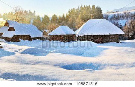 Frosty sunny morning. Winter snowfall