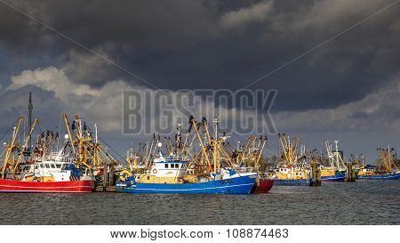 Dutch Fishing Fleet In Lauwersoog Harbor