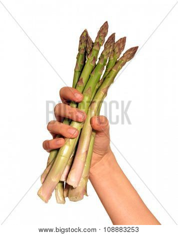 Female hand holding a bunch of asparagus isolated on White background.