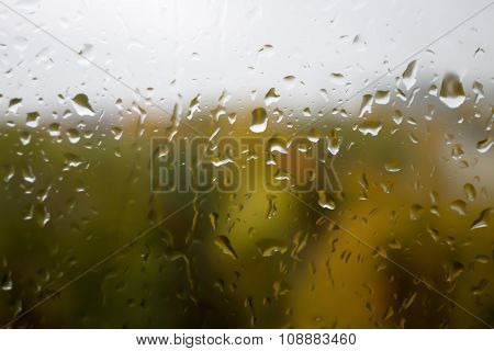 Drops of rain on glass