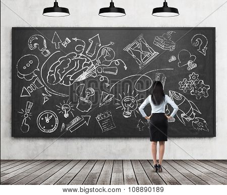 A Rear View Of A Full Length Brunette Lady Who Is Looking At The Black Chalkboard With The Sketched