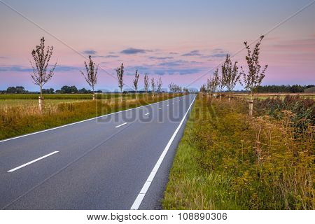 Road With Vanishing Point