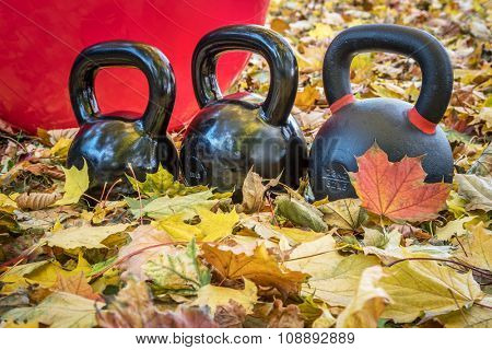 black iron exercise kettlebells with red  Swiss ball and maple leaves - outdoor  fitness concept
