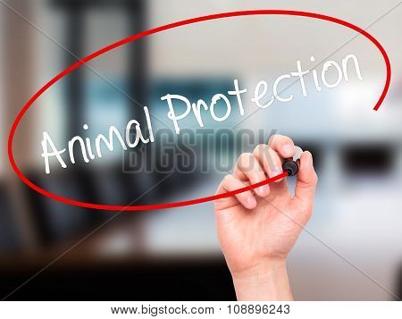 Man Hand writing Animal Protection with black marker on visual screen