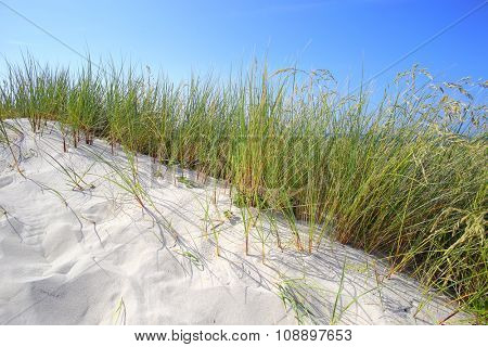 White sand dunes with grass and blue sky