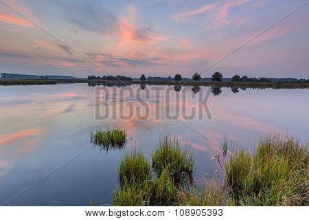 Aquatic Landscape