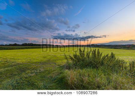 Colorful Agricultural Landscape