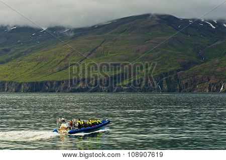HUSAVIK, ICELAND - SEPTEMBER 1, 2015: Whale watching tour from fast zodiac boat near Husavik