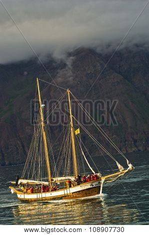 Whale watching tour from old sailing ship at Husavik bay area