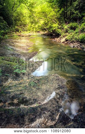 Small creek in a forest near Dog Slaughter Falls near Corbin, Kentucky