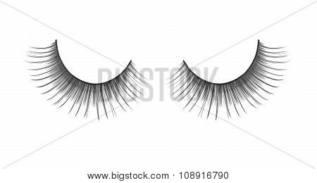 Black False Eyelashes On An Isolated White Background Photographed Coarsely