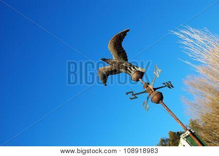 Eagle Compass