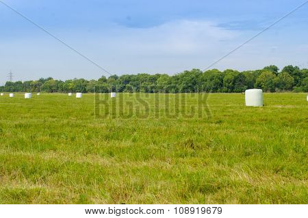 haystacks in the green field