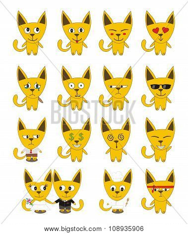Set of yellow funny cats