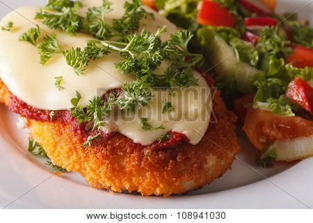 Chicken Parmigiana And Vegetable Salad Macro. Horizontal