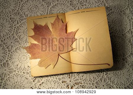 Old Open Book With Dry Maple Leaf