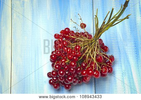 Red Viburnum On A Blue Wooden Background